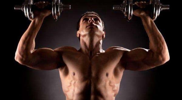 Сплит тренировки подразумевают отдельную прокачку мышц