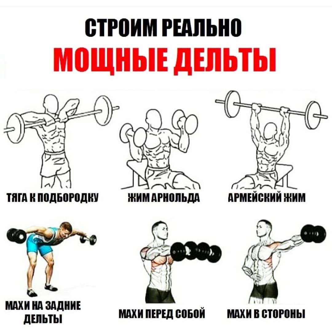 Основные упражнения на плечи