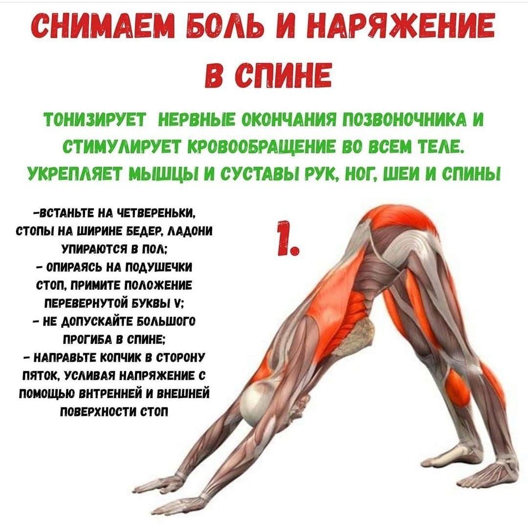 Упражнение для укрепления спины и снятия боли