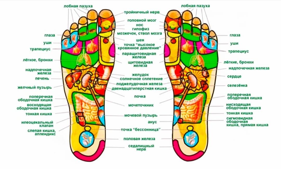 Зоны воздействия на ступнях